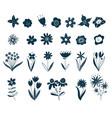 scandinavian flower elements doodle plants vector image