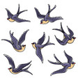 set of flying swallows free birdssymbol of luck vector image