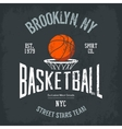 streetball or urban sport team logo and banner vector image