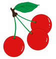 Three ripe cherries vector image vector image