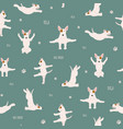 yoga dogs poses and exercises bull terrier vector image vector image
