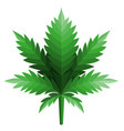 cannabis leaf logo designs inspiration isolated on vector image vector image