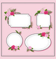 different frame design with pink roses vector image vector image