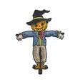 halloween pumpkin scarecrow sketch vector image vector image