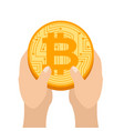 hand is full bitcoin profit crypto currency gain vector image vector image