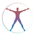 modern colorful vitruvian man vector image vector image