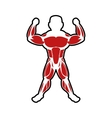 Muscle man icon Bodybuilder design vector image vector image