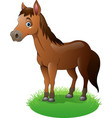 cartoon brown horse on the grass vector image vector image