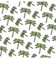 doodle tropical palm nature tree background vector image vector image