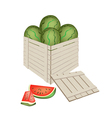 Fresh Red Watermelons in Wooden Cargo Box vector image vector image