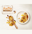 muesli plate realistic background vector image