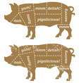 Barbecue pig design element vector