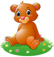 cartoon baby brown bear sitting vector image vector image