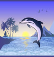 dolphin against the sunset background vector image vector image