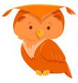 owl bird cute animal cartoon character vector image vector image