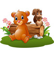 cartoon baby brown bear and squirrel in the forest vector image vector image