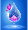 Drop and lily vector image vector image