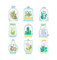 flat set of glass vessel with blooming vector image
