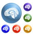 human brain icons set vector image