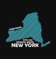 new york typography graphics for t-shirt vector image
