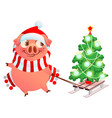 pink pig symbol of 2019 year fun pig sled vector image vector image