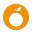 round icon orange cartoon vector image