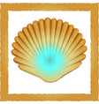 seashell pearl vector image