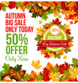 autumn sale discount offer banner template design vector image vector image