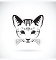 cat face on white background pet animals vector image vector image