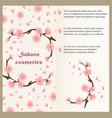 cosmetics flyer template concept with sakura vector image vector image