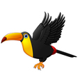 Cute cartoon toucan bird flying vector image vector image