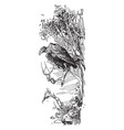 eagle in tree vintage vector image vector image