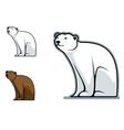 Funny bear vector image vector image