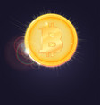 gold coin of the bitcoin the symbol of the vector image vector image