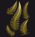 gold feathers drawings vector image vector image