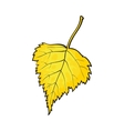 Beautiful yellow colored autumn birch leave vector image