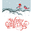 Christmas background with birds vector image vector image