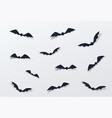 halloween bat decor background paper cut vector image vector image