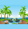 two black ducks in pond vector image vector image