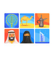 united arab emirates symbols set people in vector image vector image