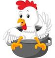 chicken cartoon in the saucepan vector image