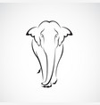 elephant design on a white background wild vector image vector image
