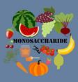 monosaccharide healthy nutrient rich food vector image vector image