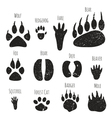 Set of forest animals footprints vector image vector image