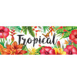 summer banner from tropical flowers vector image vector image