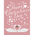 Valentines day background with two loving swans vector image vector image