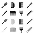 isolated object of brush and hair symbol set of vector image