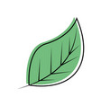 leaves eco symbol vector image vector image