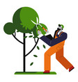 man cutting tree gardener trims plant isolated vector image vector image