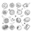 set of mexican traditional food different dishes vector image